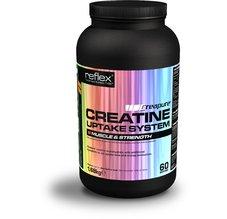 Creatine UpTake - System