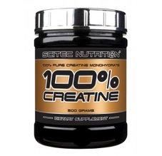 Creatine 100% Pure
