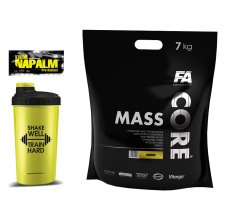 Mass Core + šejkr + vzorek Royal protein