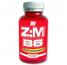 ZMB 6